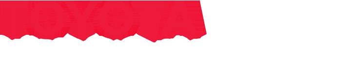 Toyota Marin dealer main logo